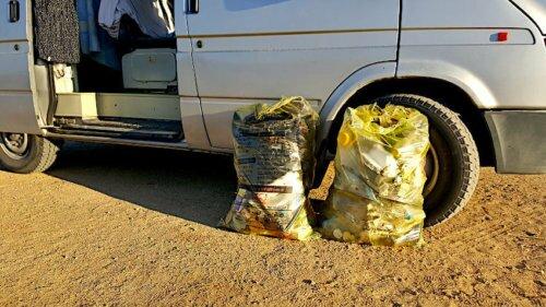 Müll sammeln (Clean-Up) – Gemeinsam unsere Erde sauber halten