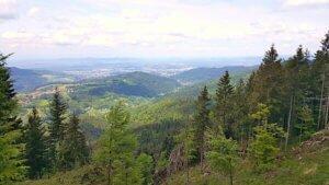 Städtetrip Freiburg: Sehenswürdigkeiten, Wandern im Schwarzwald & vegan Essen
